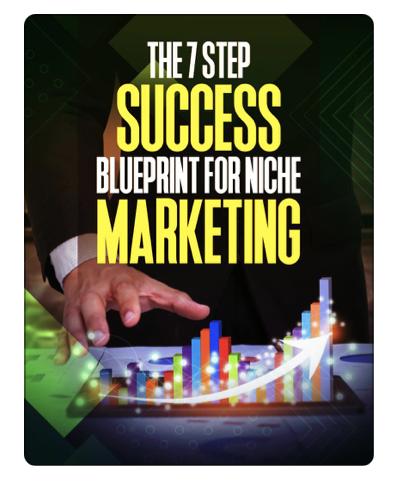The 7 Steps Success Blueprint for Niche Marketing